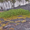 Pu'Uhonua O Honaunau National Historical Park, Big Island