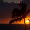 Hawaii-Oahu-6978