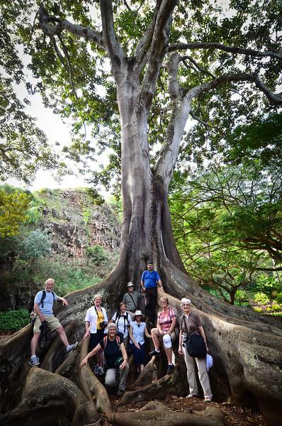 Group in Kauai