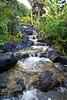 Hawaii-9790