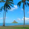Hawaii-Oahu-6847_8_9