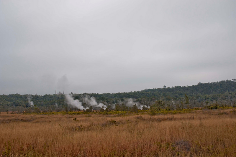 Steam venting from underground.  At Volcano National Park.