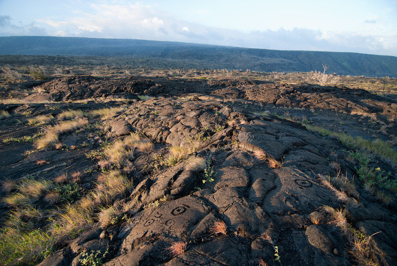 """<span id=""""title"""">Petroglyphs 1</span> <em>Hawaii Volcanoes National Park</em> It was amazing to see so many petroglyphs all in one place. It's a short hike to them, but it was a bit slow-going over the rugged lava. I can't imagine living in this area."""