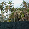 "<span id=""title"">Black Sand and Palm Trees</span> <em>Punalu'u Beach, Hawaii</em> The black sand in this photo was dry, so it's a bit more gray. We learned later that the sand in black sand beaches is a direct deposit of lava that flowed into the ocean and shattered upon hitting the water. Once the lava flow in that area stops, the black sand starts to erode away - within a couple decades or so."