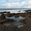 "<span id=""title"">Pools</span> <em>North Shore, Oahu</em> Neat tide pools along the North Shore. All sorts of little animals and plants were waiting to be discovered..."