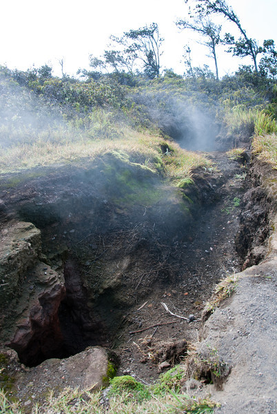 "<span id=""title"">Steam Vents 2</span> <em>Hawaii Volcanoes National Park</em> The steam vents really are simply holes in the ground where steam comes out. It's pretty crazy to see, and even crazier to walk through the steam :)"
