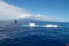 The submarine Atlantis surfacing off the coast of Maui.