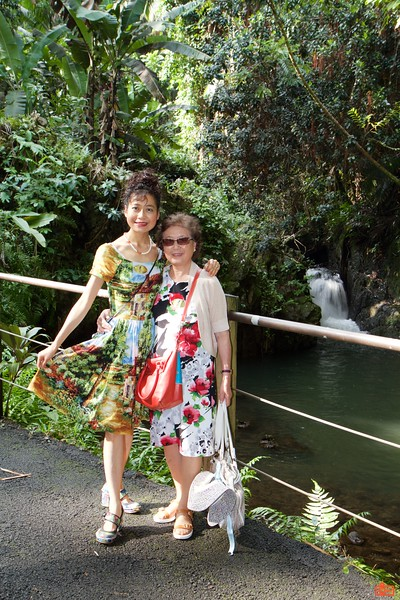 In the afternoon, we visited the Hawaii Tropical Botanical Garden.