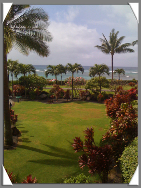 View from Roy and Sandy's condo in Poipu, Kauai