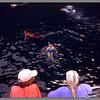 Jacki snorkeling off the Na Pali Coast