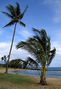Poipu Beach,Kauai