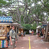 Outdoor marketplace