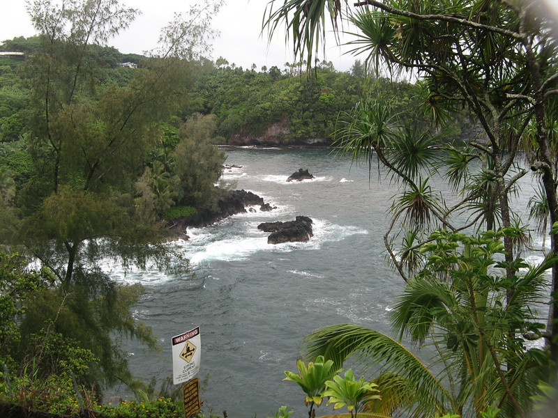 """We flew to Hilo, Hawaii on Saturday night and set off for sight-seeing on Sunday morning, despite the rain.  I detoured us onto a """"scenic route"""" and we came upon this trail down to the ocean."""