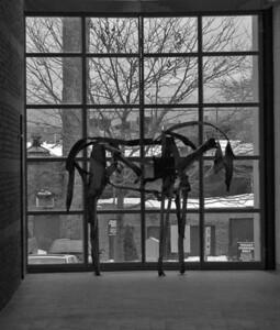 Peabody Essex Museum, Salem Massachusetts