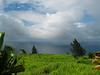 The view east from Honoka`a, Hawai`i Island