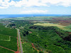 Hanapepe River Valley, Kaua`i