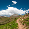 Molas Pass - Colorado Trail to engineer mountain trail.  2009