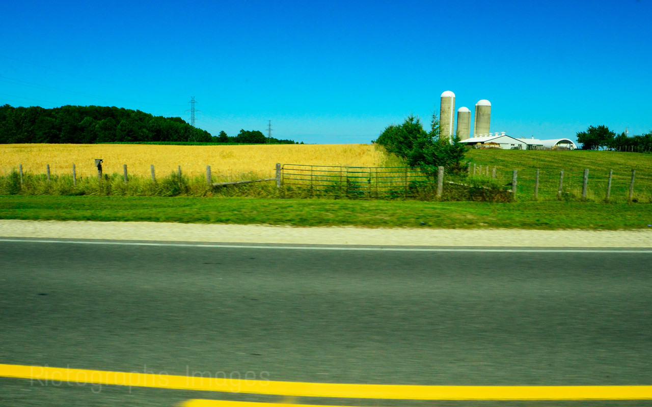 Drive By Shooting Of A Farm, SouthWestern Ontario, Canada