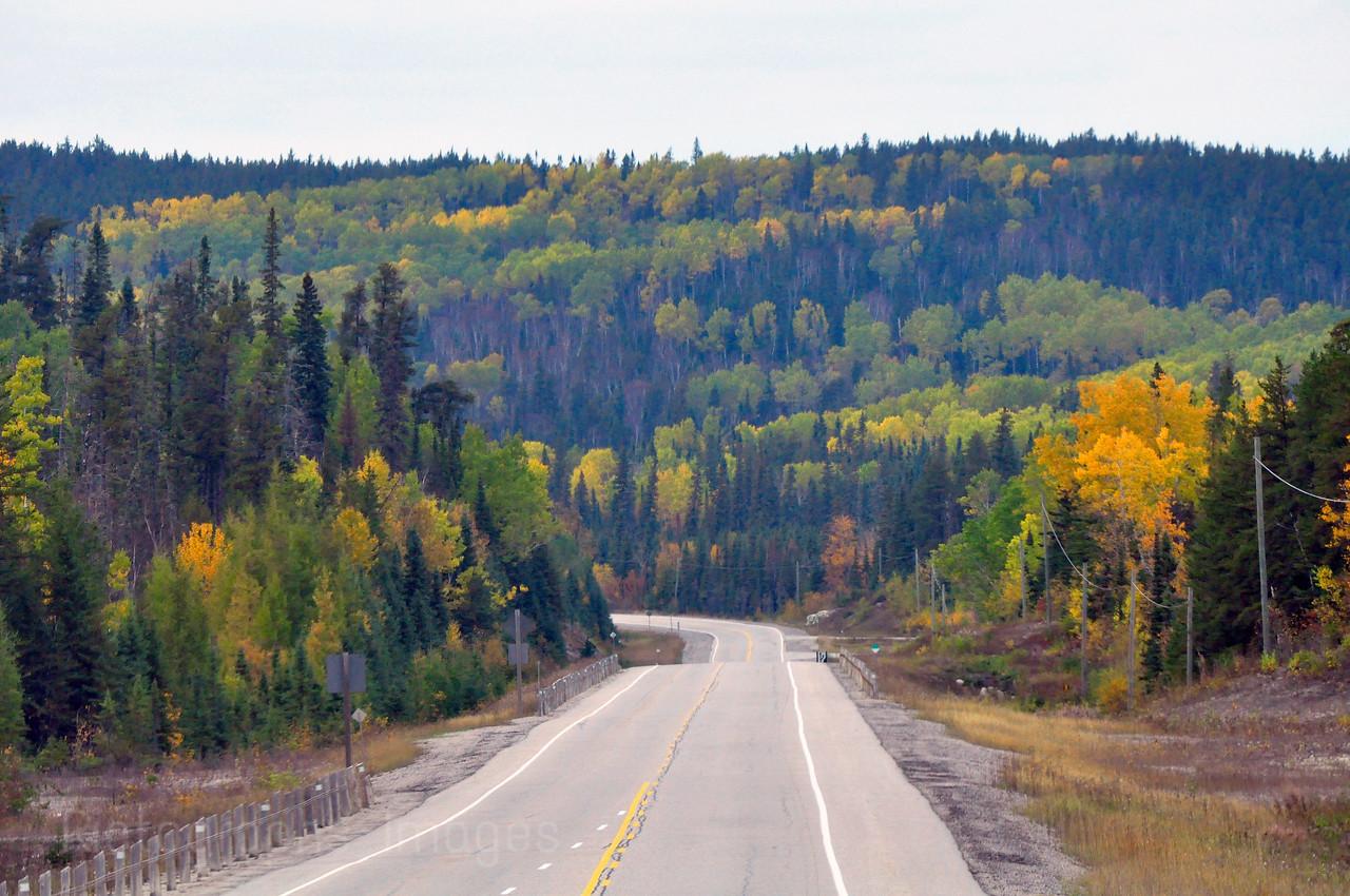 Travel Highway Seventeen