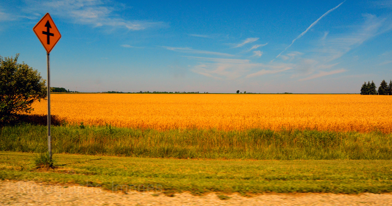 A Farm In Southwestern Ontario, Canada, Rictographs Images