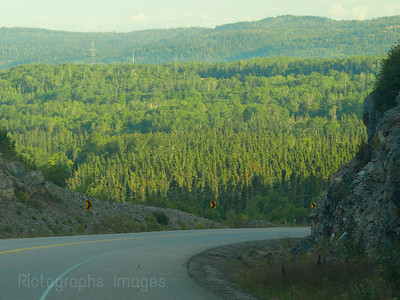 Rocks & Trees, North Western Ontario