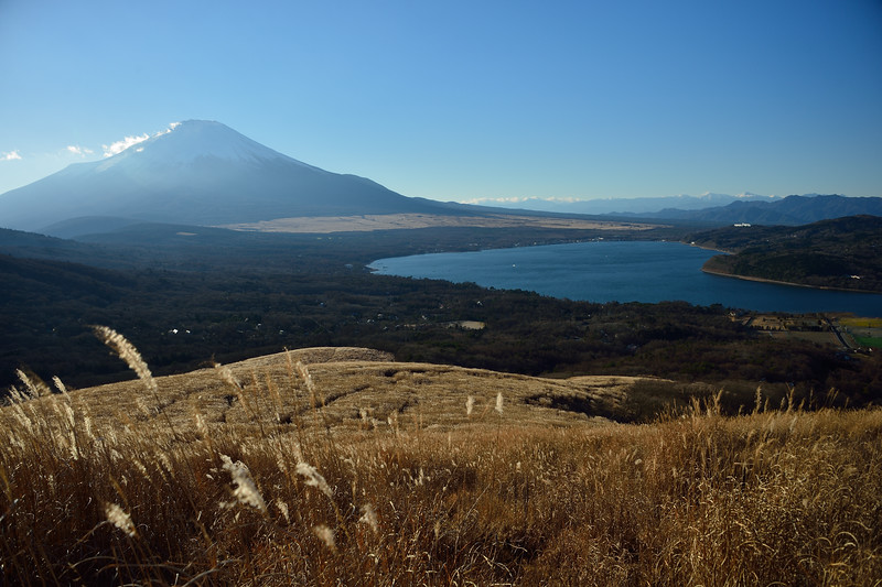 Above  Panorama Hills
