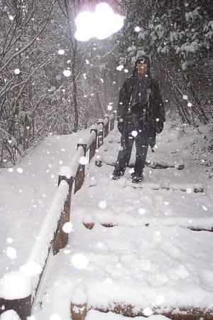 Hike to Takao san 高尾山