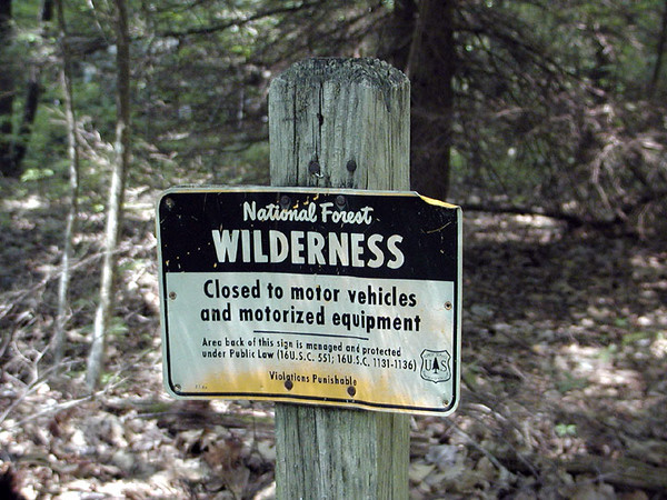 Wilderness Trails are maintained to different standards and rules than National Forest or Park trails.  They are closed to all motorized traffic and mechanisation.