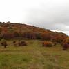 Trail across Oak Knob to Huckleberry Knob.