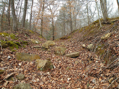 Looking back up the rugged track leading down to the Caney Fork in Scotts Gulf.