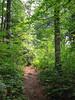 Ravenswood Park.  Gloucester MA