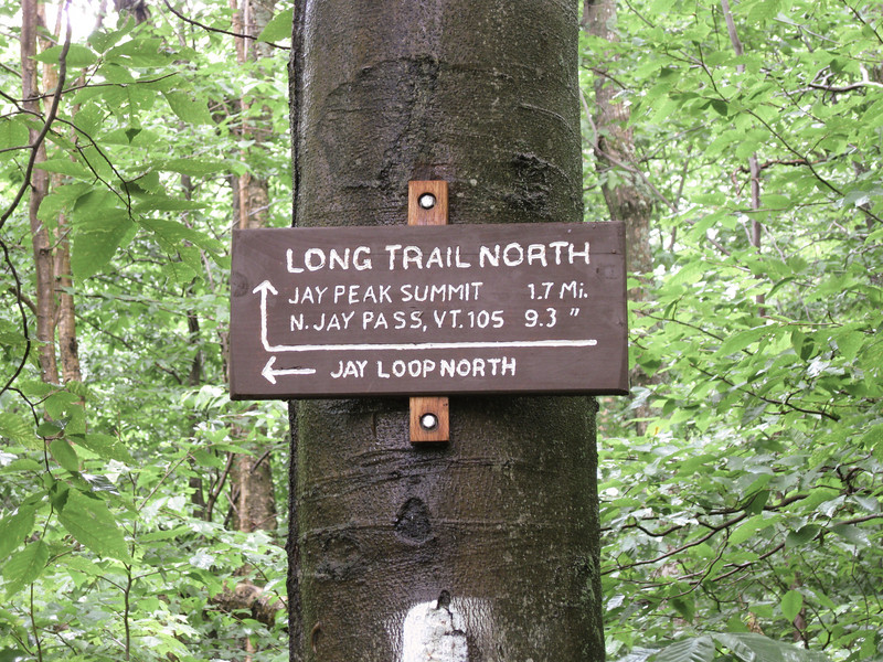 Day 1 - Hiked a portion of the Long trail along Jay Peak.