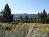 View from the Big Bear Discovery Center.