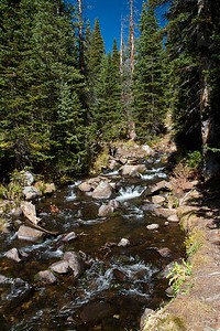 River running through forest seen at beginning of the Blue Lake Trail