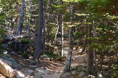 Trail on the way up the Chasm Lake