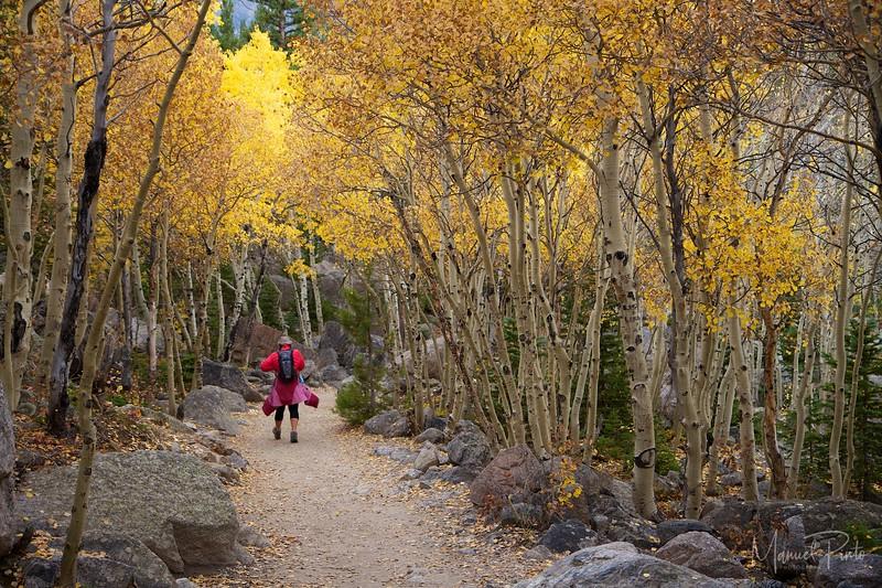 Hiking in late fall - Kate