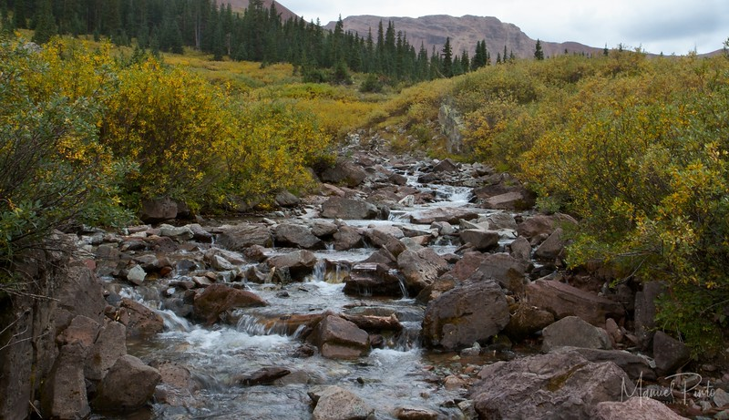 Creek at West Maroon Pass Trail
