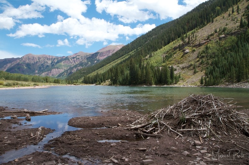 Beaver Dam at Maroon Lake