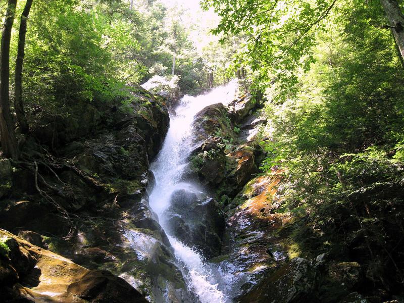Along Racebrook Falls Trail.