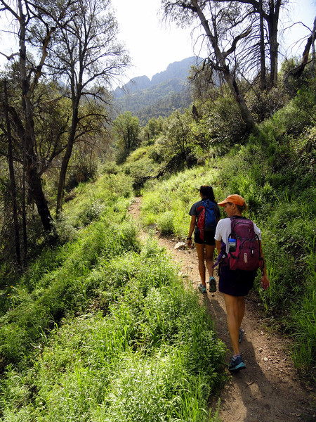Gladys and Rose early on the Old Baldy Trail, hiking up Mt Wrightson.