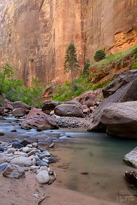 Virgin Narrows at Zion National Park, Utah