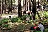 Lunch break on the West Weber Trail.