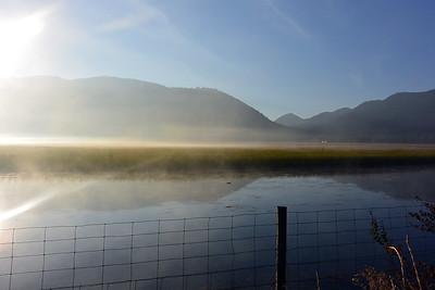 National Elk Refuge in the Morning