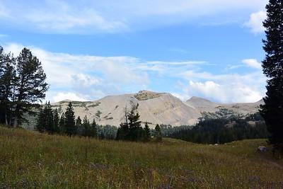 1009 Rendesvous Peak