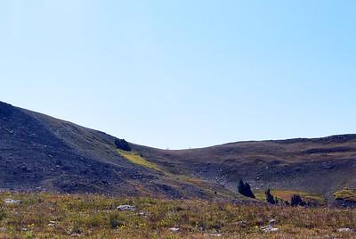 Buck Pass