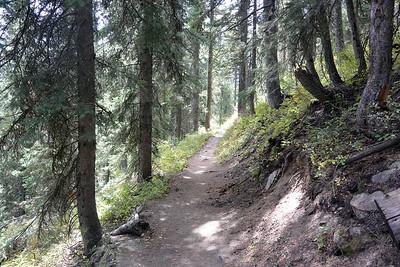 Trail to String Lake
