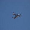 One of many Ospreys on flyby