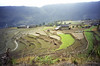 At the lower elevations the rice terraces  are broad and extensive.  Later you will see them on very steep slopes.