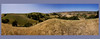 Santa_Ynez_Race_Panorama_Tall