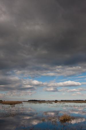 San Luis Wetlands